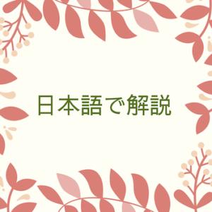 日本語で解説